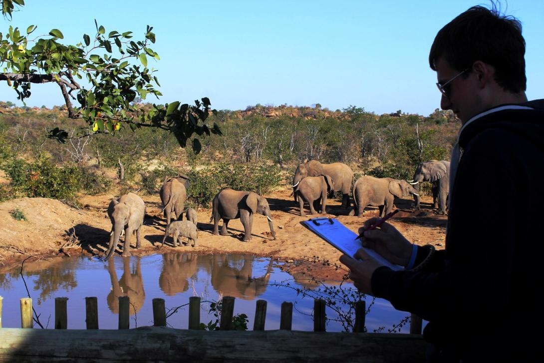 Projects Abroad Conservation volunteer, Philipp from Denmark , takes part in an elephant identification activity at the Wild at Tuli placement in Botswana